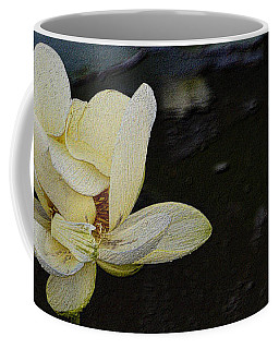 Coffee Mug featuring the photograph Water Lily Unfolding by Nadalyn Larsen