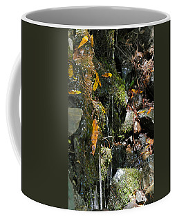 Coffee Mug featuring the photograph Water Of Life by Michele Myers