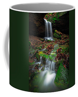 Frankfort Mineral Springs Waterfall  Coffee Mug
