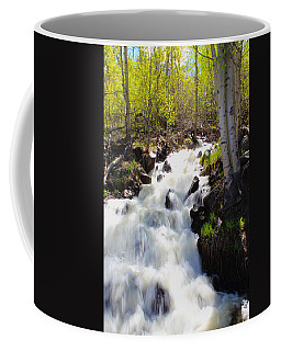 Waterfall By The Aspens Coffee Mug