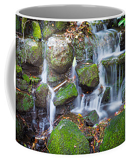 Waterfall In Marlay Park Coffee Mug by Semmick Photo