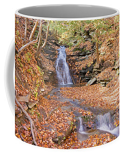 Coffee Mug featuring the photograph Waterfall In The Fall by Susan Leonard