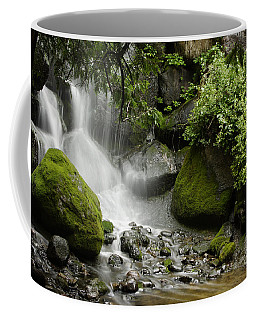 Waterfall Mist Coffee Mug