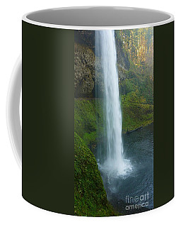 Waterfall View Coffee Mug