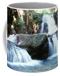 Waterfalls Hilo Hi Coffee Mug