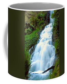 Waterfalls In Golden Gate Park Coffee Mug
