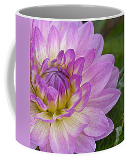 Waterlily Dahlia Coffee Mug
