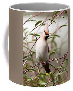 Waxwing Coffee Mug