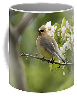 Waxwing In A Dream Coffee Mug by Penny Meyers