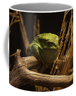 Waxy Monkey Tree Frog Coffee Mug