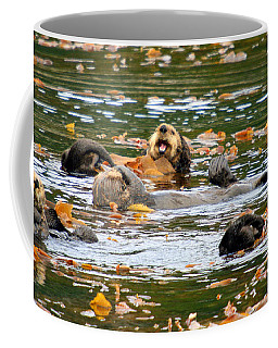 We Otter Be In Pictures Coffee Mug