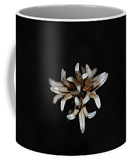 Coffee Mug featuring the photograph Weed On Black by Mim White