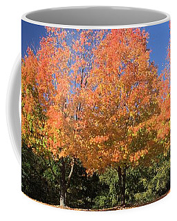 Coffee Mug featuring the photograph Welcome Autumn by Gordon Elwell