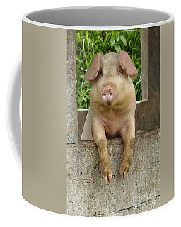 Well Hello There Coffee Mug by Bob Christopher