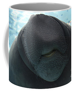 West Indian Manatee Smile Coffee Mug