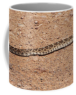Western Diamondback Rattle Snake Coffee Mug
