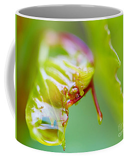 Coffee Mug featuring the photograph Wet Grape Leaf  by Nick  Biemans