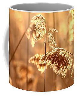 Wetland Sunrise Coffee Mug by Kenny Glotfelty