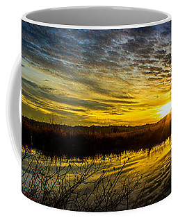 Wetlands Sunset Coffee Mug