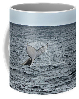Coffee Mug featuring the photograph Whale Of A Time by Miroslava Jurcik