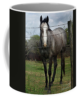 Coffee Mug featuring the photograph What Are You Afraid Of by Peter Piatt