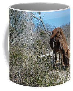 Coffee Mug featuring the photograph What Do I See Here? by Photographic Arts And Design Studio