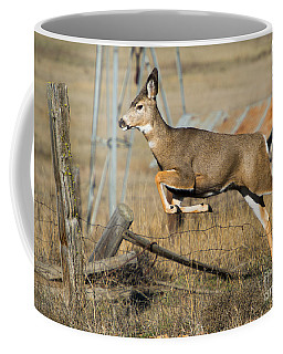 What Fence Coffee Mug