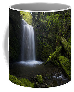 Whatcom Falls Serenity Coffee Mug by Mike Reid