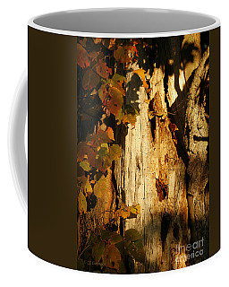What's In The Crevasses? Coffee Mug