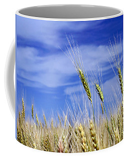 Coffee Mug featuring the photograph Wheat Trio by Keith Armstrong