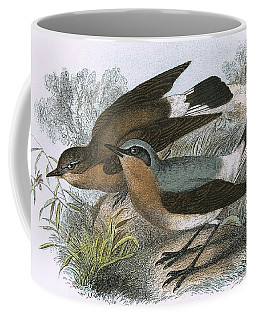 Wheatear Coffee Mug