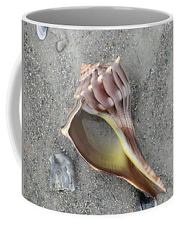 Whelk With Sand Coffee Mug