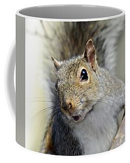 Where Are The Nuts Coffee Mug