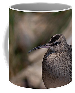 Coffee Mug featuring the photograph Whimbrel by Bianca Nadeau