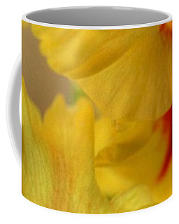 Coffee Mug featuring the photograph Whimsy by Deborah  Crew-Johnson