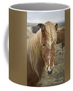 Calmness Coffee Mugs