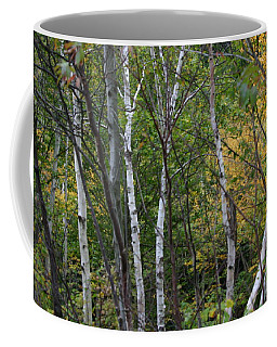 Coffee Mug featuring the photograph White Birches In The Woods by Denyse Duhaime