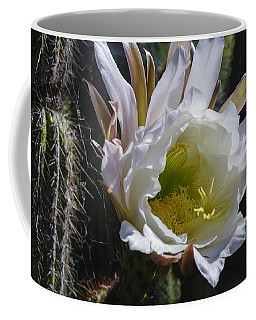 White Cactus Bloom Coffee Mug