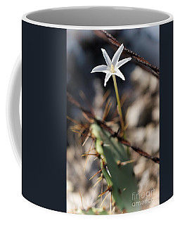Coffee Mug featuring the photograph White Cactus Flower by Erika Weber