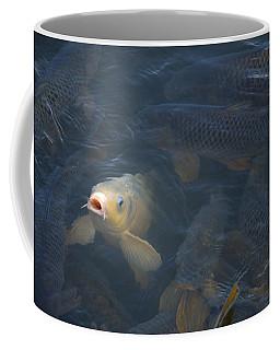 White Carp In The Lake Coffee Mug