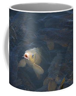 White Carp In The Lake Coffee Mug