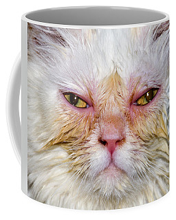 Scary White Cat Coffee Mug