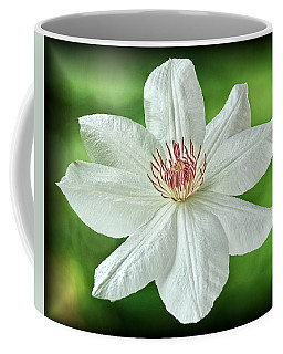 Coffee Mug featuring the photograph White Clematis by Richard Farrington