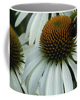 White Coneflowers  Coffee Mug by James C Thomas