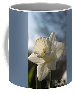White Daffodil Coffee Mug