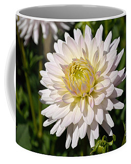 White Dahlia Flower Coffee Mug