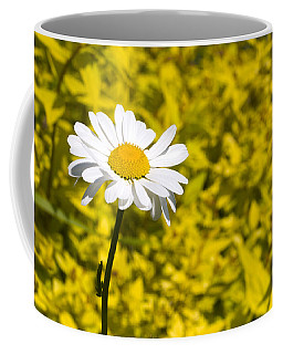 White Daisy In Yellow Garden Coffee Mug