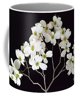 Coffee Mug featuring the photograph White Dogwood Branch by Jeannie Rhode