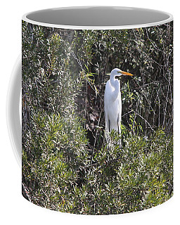 Coffee Mug featuring the photograph White Egret In The Swamp by Christiane Schulze Art And Photography