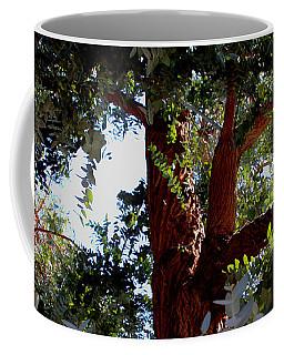 White Eucalyptus 2 Coffee Mug